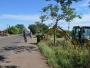 Ação em conjunto efetua limpeza na zona de acesso principal da cidade