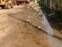 Serviços Urbanos efetua limpeza nos arredores do Cemitério